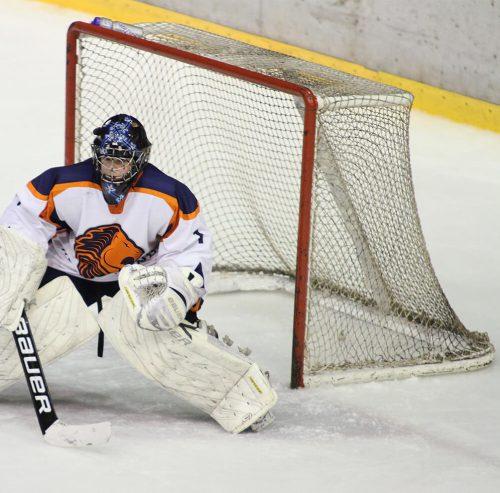 Reti hockey